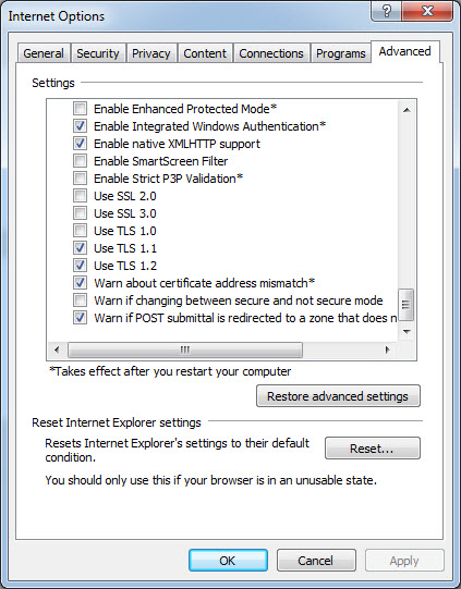 Internet Explorer TLS Options